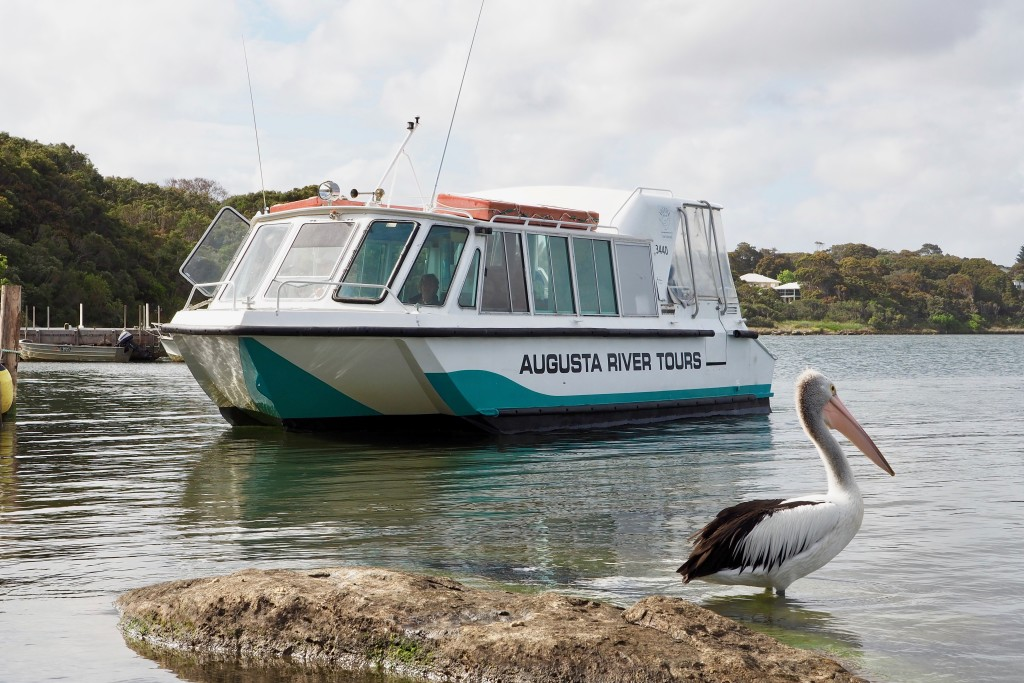Augusta River Tours