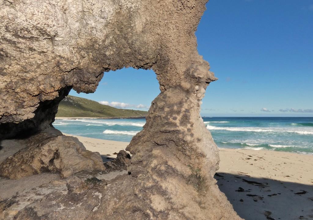 Earth Sea Star Eco-Heritage Tours