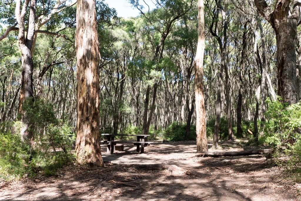 Boranup Campground