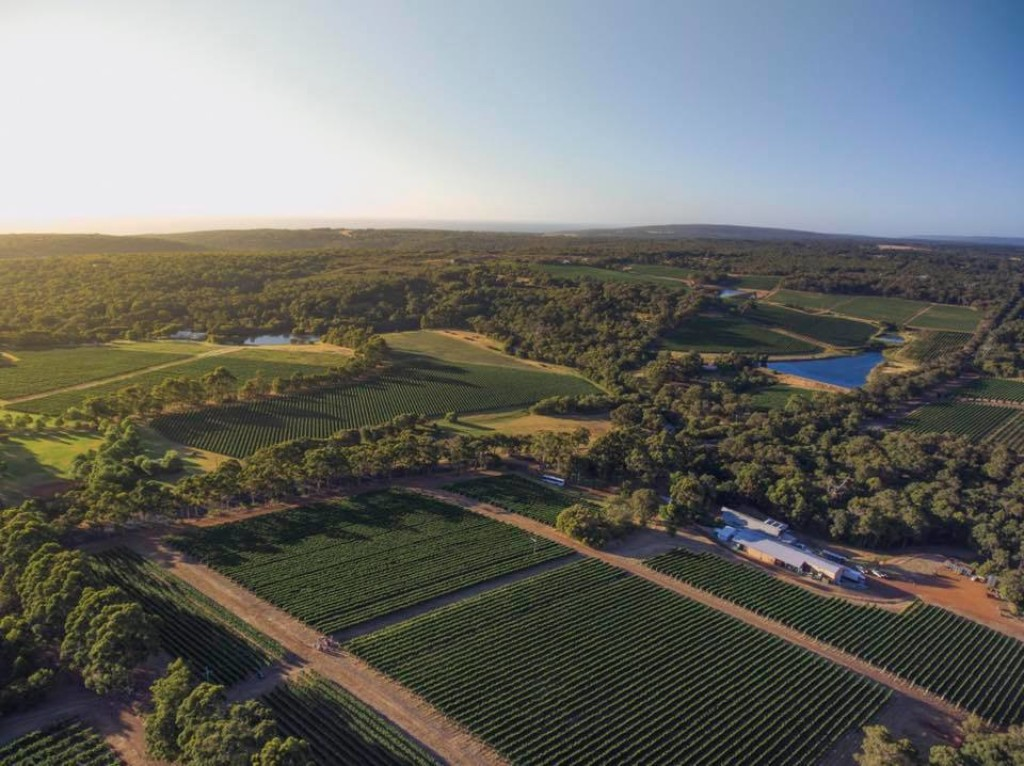 Pierro Margaret River Vineyards