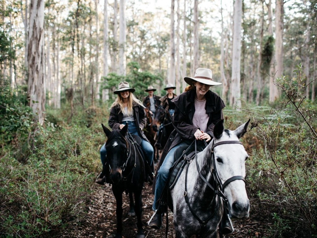 Jesters Flat Horse Riding Your Margaret River Region