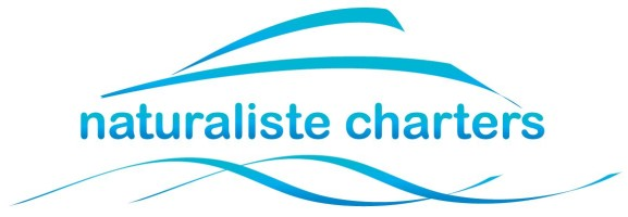 Naturaliste Charters – Whale Watching & Eco Tours logo